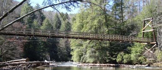 swinging bridge 2