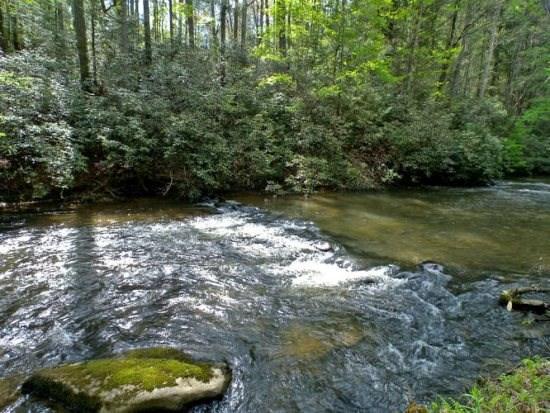 Bear Creek Lodge water